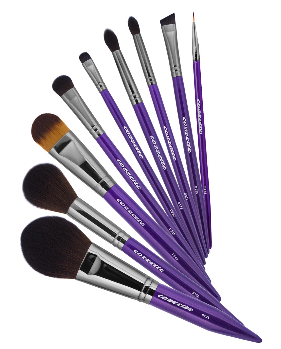 Essential Makeup Brush Set