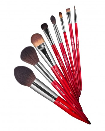 Holiday Makeup Brush Set